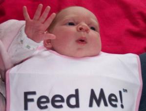 feeder21.jpg